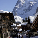 Search_result_murren_village